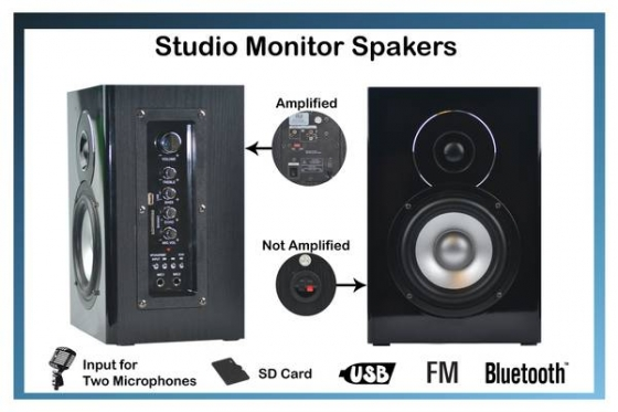 Amplified and Passive Studio Monitor Speakers | Bluetooth/FM/USB/SD - $135 (Glendale)