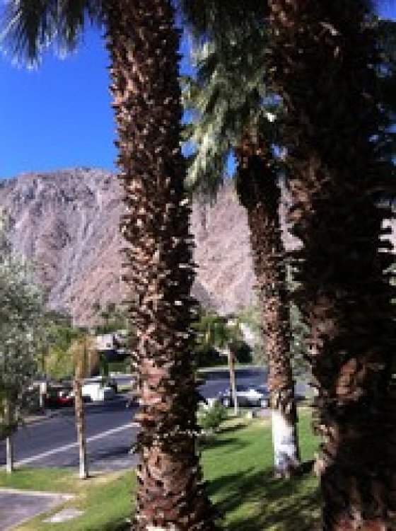 $1,500, 1br, Delightful upper one bedroom available FOR COACHELLA AND STAGECOACH RENTAL $1500 PER WEEKEND